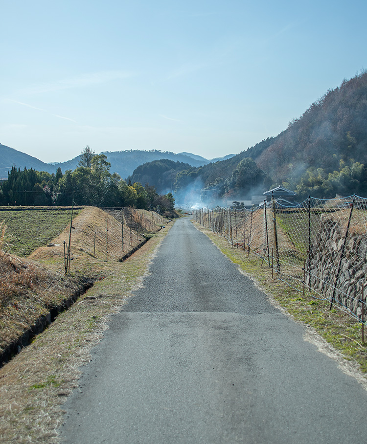 能勢東郷の風景2