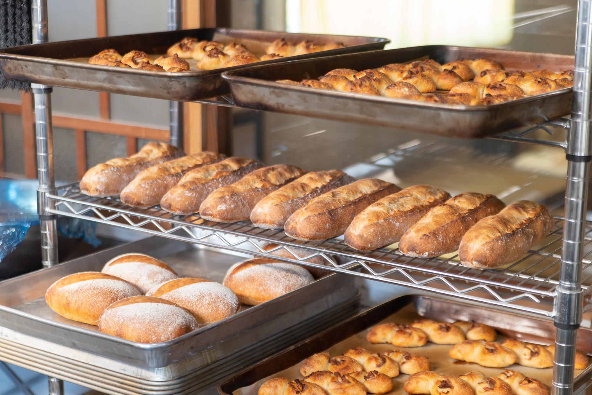 焼きあがったパンたち